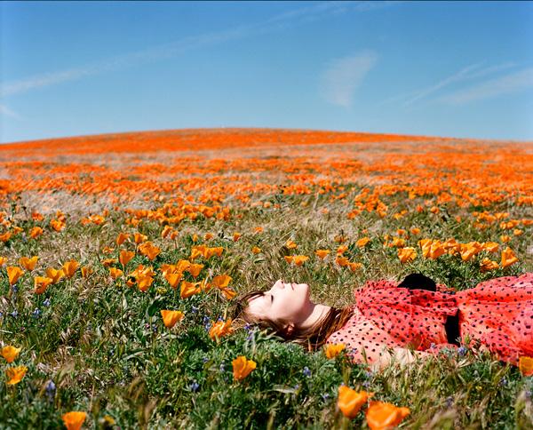 woman fields