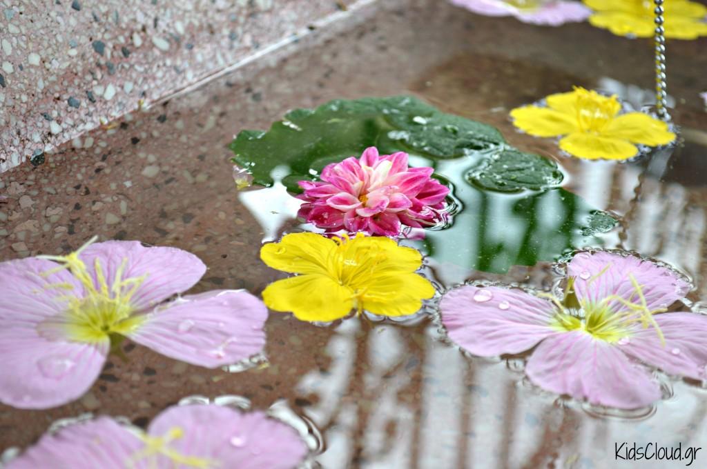 Λουλούδια στη βρύση